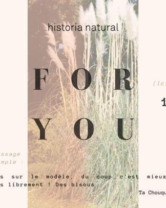 carte cadeau historia natural sim